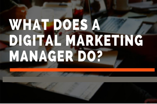 What does digital marketing manager do?